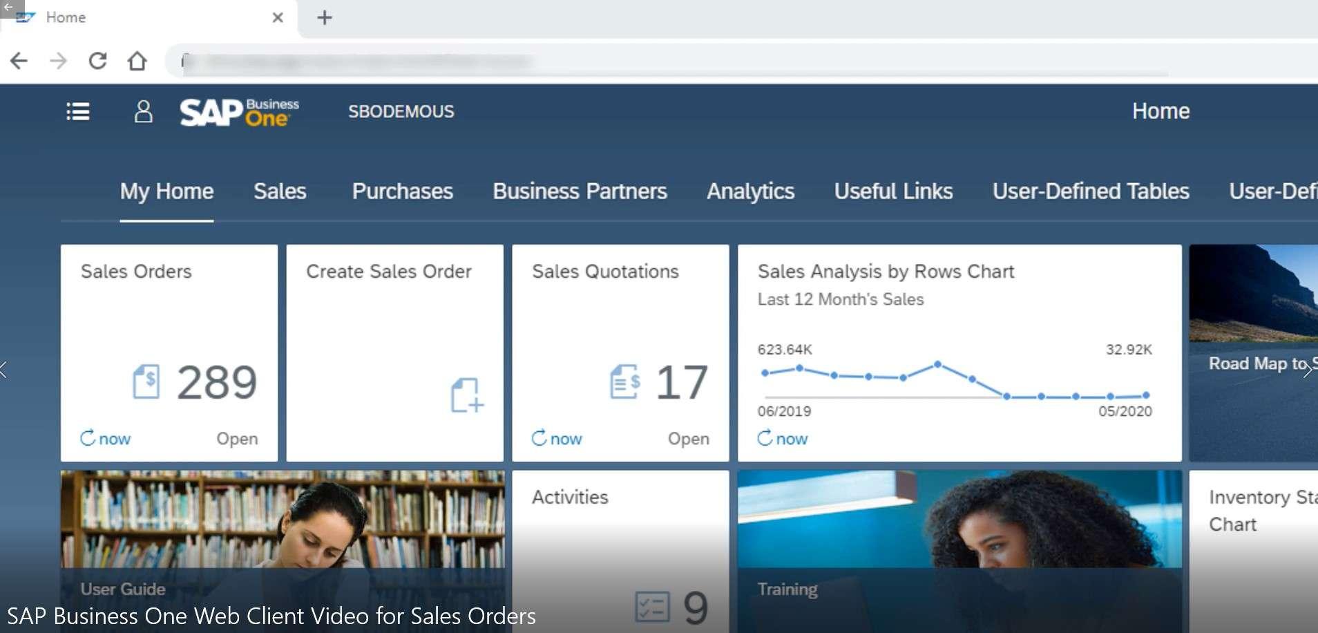 SAP Business One Web Client Sales Orders