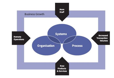 business growth diagram